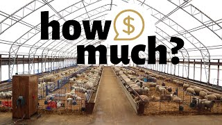 How much did it cost to build our sheep barn?  Vlog 220