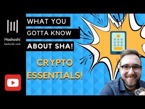 Secure Hash Algorithm Explained (SHA)
