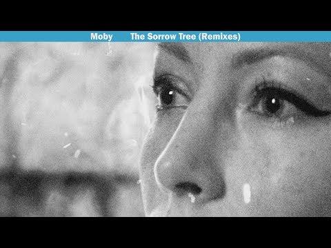 Mo  The Sorrow Tree feat Julie Mintz 4 am Mulholland Drive Remix