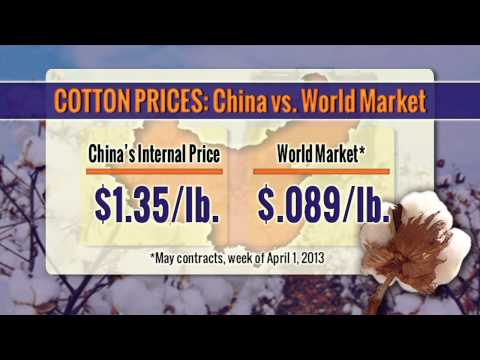 Bottom Line — Exporting Cotton Back to China