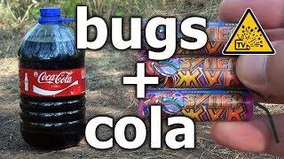 3 супержука в пятилитровой бутылке Coca-Cola