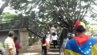Parque Negra Hipolita, Valencia, Carabobo #19A