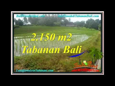 Affordable PROPERTY LAND SALE IN TABANAN TJTB312