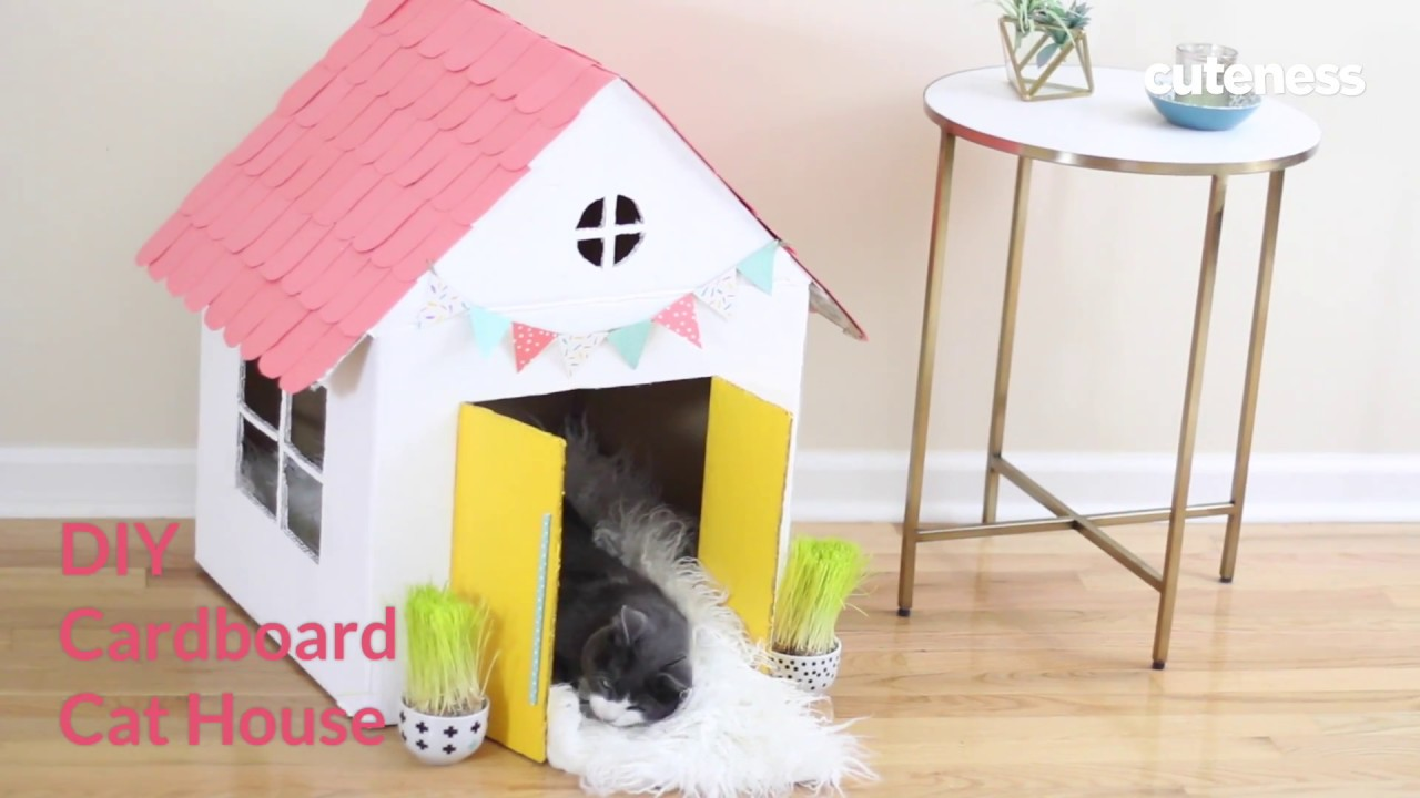 Cat House How To Build A Cat House Cutenesscom Youtube
