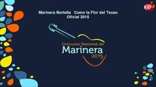 Marinera Norteña   Como la Flor del Texao   Oficial 2015