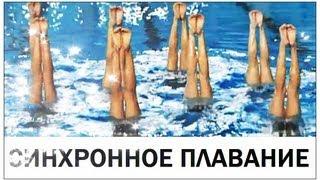 Галилео. Синхронное плавание