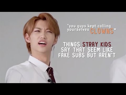 things stray kids say that seem like fake subs but aren't