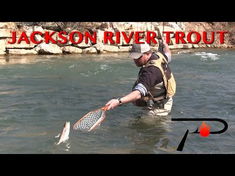 Trout Fishing Virginia's Jackson River