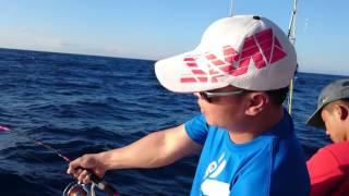 台灣莎美釣具-Taiwan SAME Fishing Tackle Co., Ltd. Slow fall jigging rod FJ-632S with YellowFin Tuna
