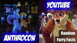 FURRY PORN an der Anthrocon | Der GRÖßTE FURRY-YOUTUBER | Random Furry Facts #8
