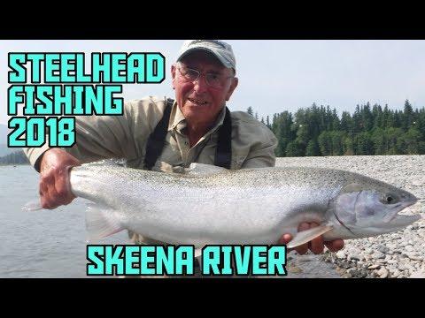 Steelhead Flyfishing Skeena River Terrace 2018