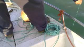 Pesca de la corvina 42 kilos en sanlucar de barrameda (pelu)