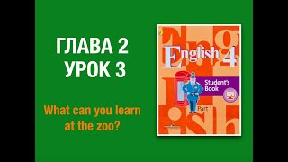 Английский язык 4 класс Кузовлев Часть 1 глава 2 урок 3 #english4 #кузовлев4класс #английскийязык