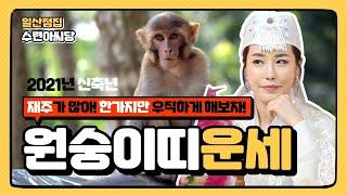 (일산점집)★2021년 신축년 띠별 운세풀이★선녀가 알려주는 원숭이띠(30세, 42세, 54세,66세)생들의…