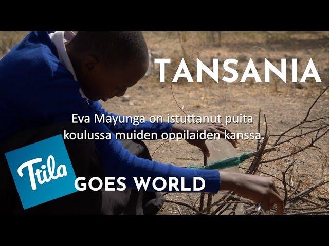 Ttila GOES WORLD: Puut ovat elinehto (Tansania)