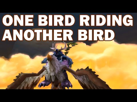 One Bird Riding on Another Bird - Boomkin Questing in World of Warcraft