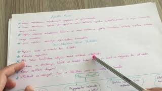 11.Sınıf Akaid Dersi, 1. Ünite 2.Kısım