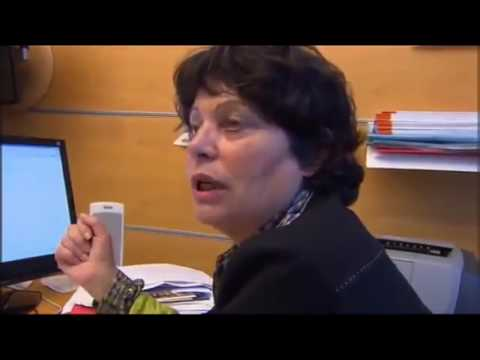 ICNIRP - Ondes - Michèle RIVASI