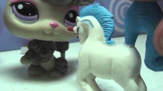 "Littlest Pet Shop: Kandy TV Episode #3 ""Make a Wish!"" (11/11/11 Special)"