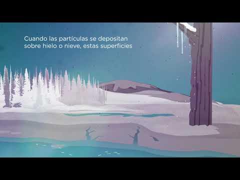 Biomass burning animations 2019 (Spanish)