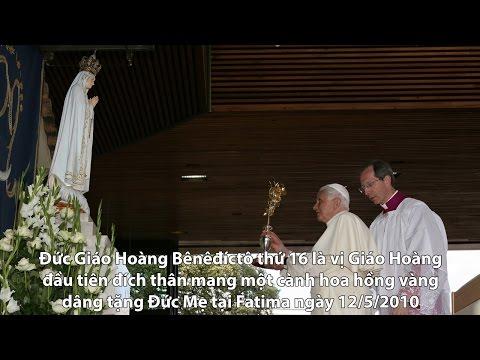 Thời sự tuần qua 19/05/2017: Lịch sử cành hoa hồng vàng Đức Thánh Cha dâng kính Đức Mẹ Fatima