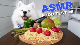asmr-dog-reviewing-different-types-of-food-5-i-mayasmr