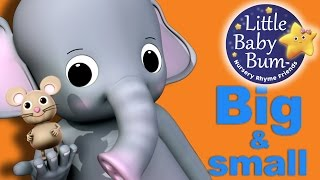 Big and Small Song | Nursery Rhymes | Original Song by LittleBabyBum! thumbnail