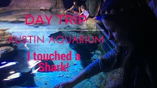 Day In My Life | Austin Aquarium | I pet sharks & Manta Rays! | Austin Texas | Cat's Life