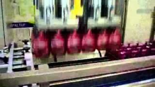 Укладчик флаконов с дозатором триггер(Автомат упаковки/укладки флаконов с дозатором типа триггер в коробку. Производитель APSOL (Италия). Применяет..., 2011-01-15T23:13:50.000Z)