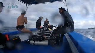 [스쿠버다이빙/scubadiving/코브라다이브]Balicasg diving Tour