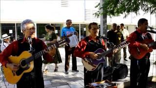 Video TRIO  OASIS   DEL   SINAI  /  CULTO  EVANGELISTICO  EN  RIO  PIEDRA   2014 download MP3, 3GP, MP4, WEBM, AVI, FLV Agustus 2018