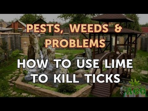 How To Use Lime To Kill Ticks Youtube