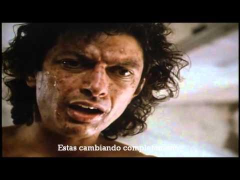 """""""La mosca"""" de David Cronenberg - Ciclo de Cine de Ciencia ficcion en el CIC"""