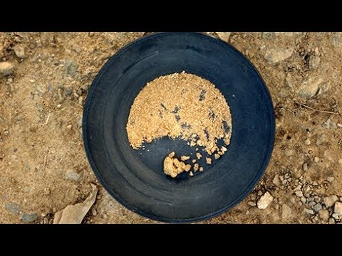 Pounds and Pounds of Gold: I Mined Gold at Sterling Creek Mine | Glenn Wadstein