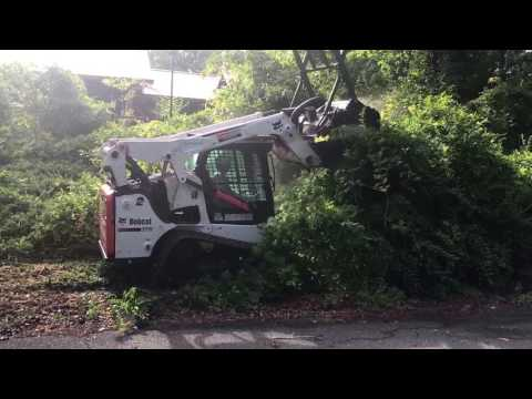 Clearing Overgrowth For Homeowner Using Forestry Mulcher