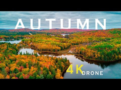 Canadian Autumn (4K Drone Footage)