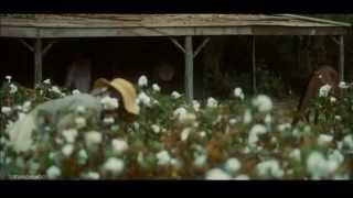 Al Green - Free at Last (Legendado)