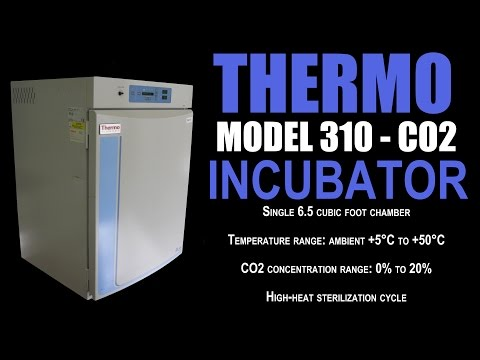 THERMO 310 CO2 INCUBATOR (3176D)