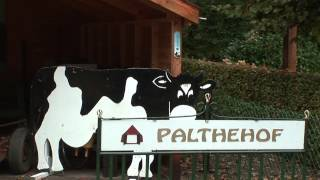 Palthehofmuseum