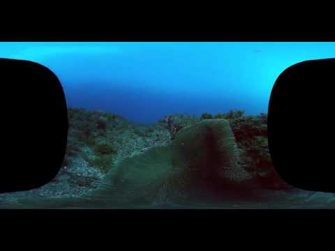 室戸世界ジオパーク360度VR-室戸沖・海中 /Muroto UNESCO Global Geopark 360 degrees VR- Muroto sea