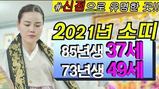 [용한점집][신점]2021년 소띠 나이별운세입니다(85년생 37세 / 73년생 49세)