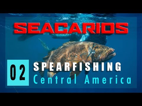 Seacarios - 02 - Spearfishing Central America