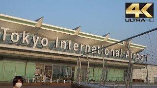 Tokyo International Airport | 東京国際空港 | Haneda International Airport | 羽田空港 4K