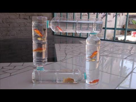 Cara Membuat Aquarium Dari Botol Bekas Youtube