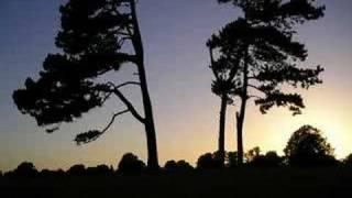 Play Sunset