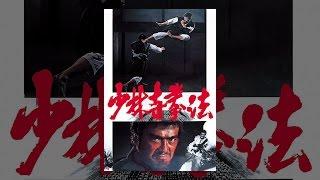 少林寺拳法 thumbnail