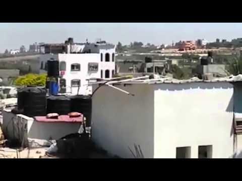ynet חדשות תוכן ועדכונים   ידיעות אחרונות