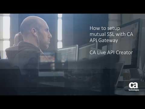 How to setup mutual SSL with CA API Gateway