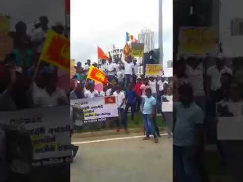 Today,Sri Lankan's as a stand on Myanmar citizens rally to express support for Aung San Suu Kyi!