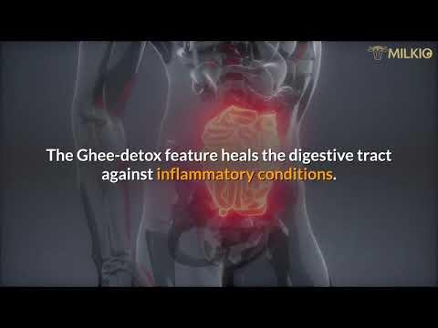 Ghee Detox has bountiful health benefits